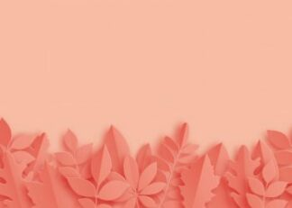 Leaves on the pastel color background poster