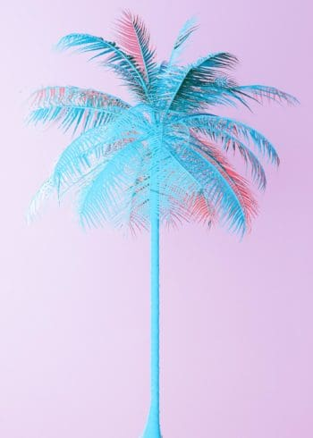 Neon blue palm on pink background poster
