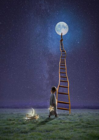 Girl's dream coming to the moon by a ladder poster