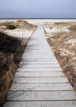 A peaceful boardwalk towards the beach poster