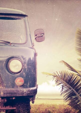 Vintage car with a palm background poster