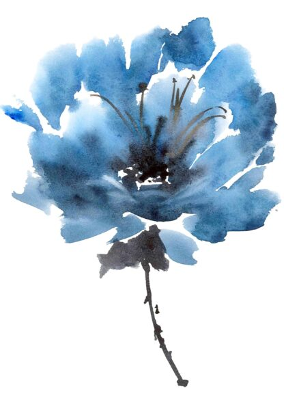 Watercolor blue peony flower poster