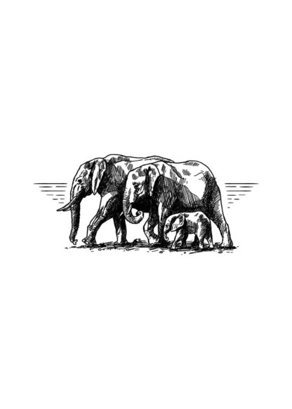Elephant family drawing poster