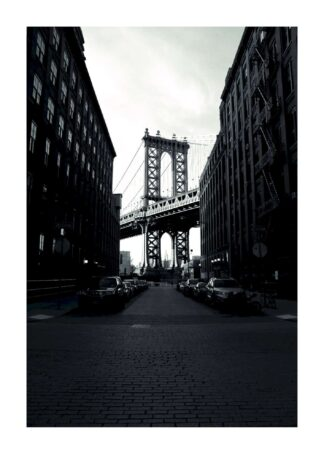 Brooklyn bridge and manhattan bridge poster