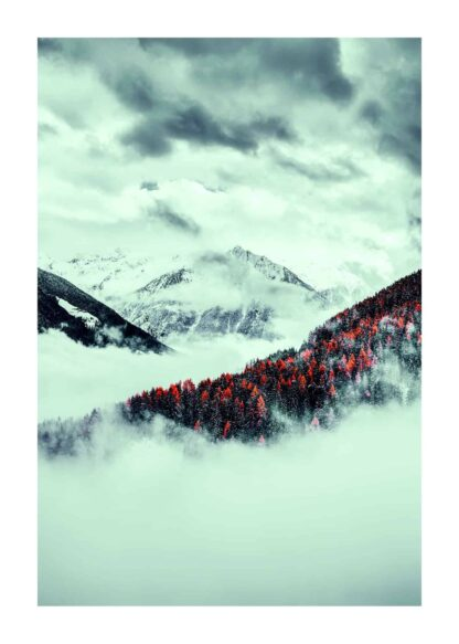 Red forest in the mist poster