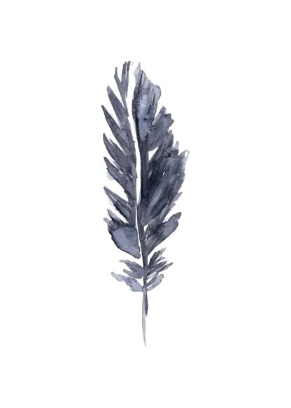 Black feather watercolor poster