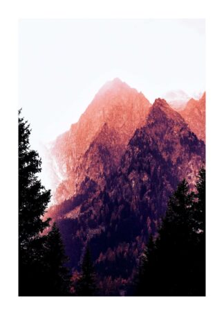 Green trees on mountain poster