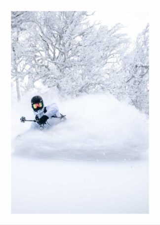 Snow boarding 1 poster