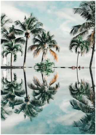 Reflection of palm trees in water poster