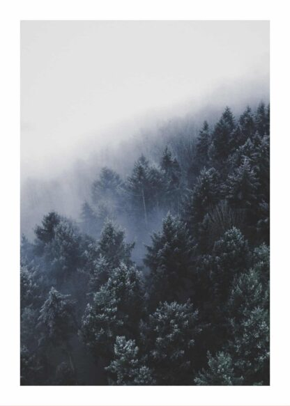 Foggy woods poster