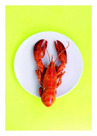 Lobster on a plate poster