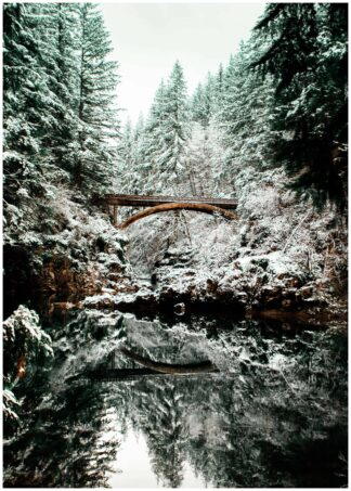 Bridge in woods poster