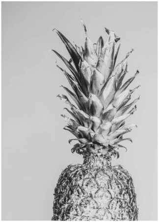 Monochrome pineapple poster