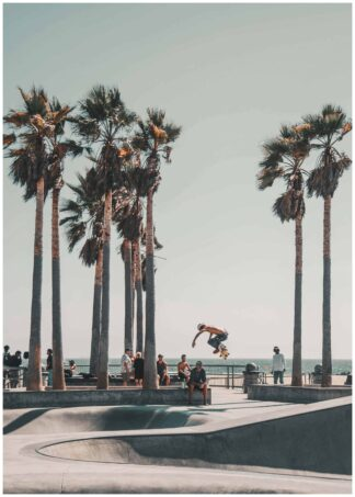 Skateboarding in Venice beach poster