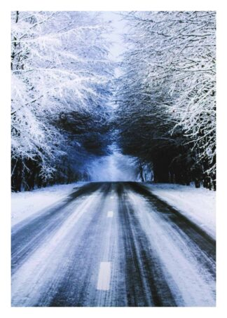 Snowy road with trees poster