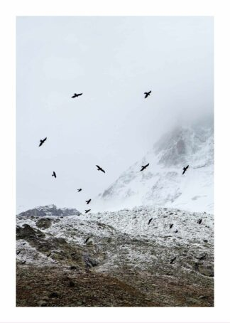 Flying birds in snowy landscape poster