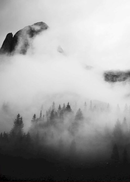Mist in the mountain poster