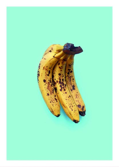 Bananas on blue background poster