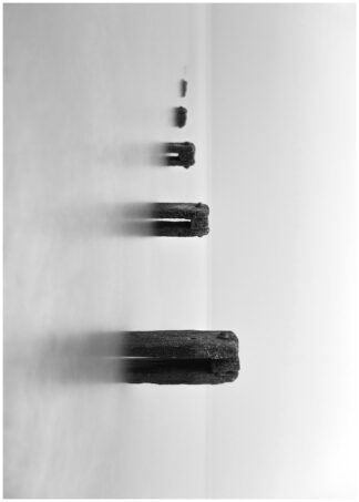 Poles in the lake black and white poster