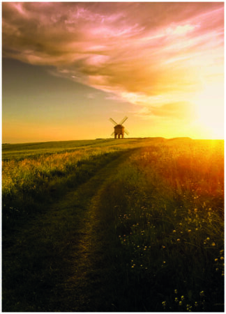 Sunset meadow field poster